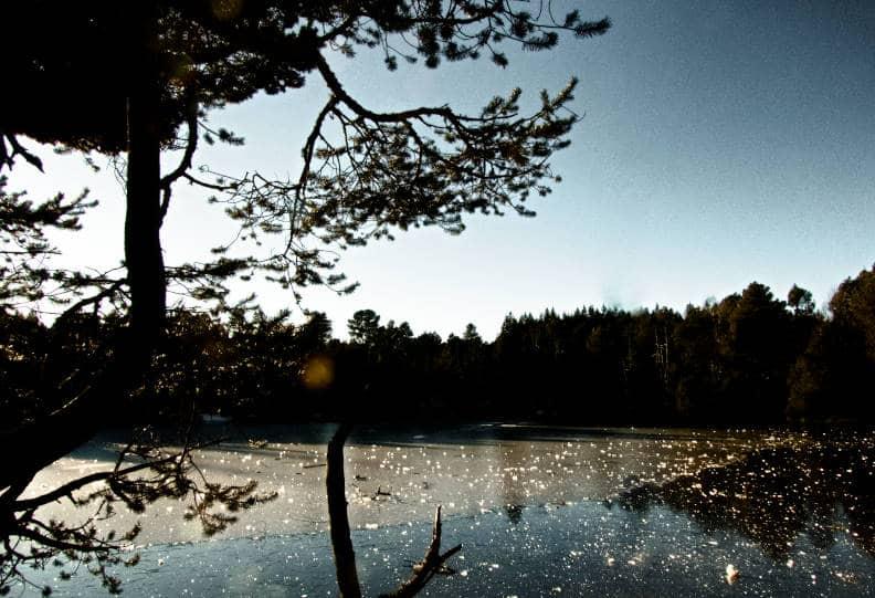 Blindensee bei Triberg - ohne Windrad im Hintergrund