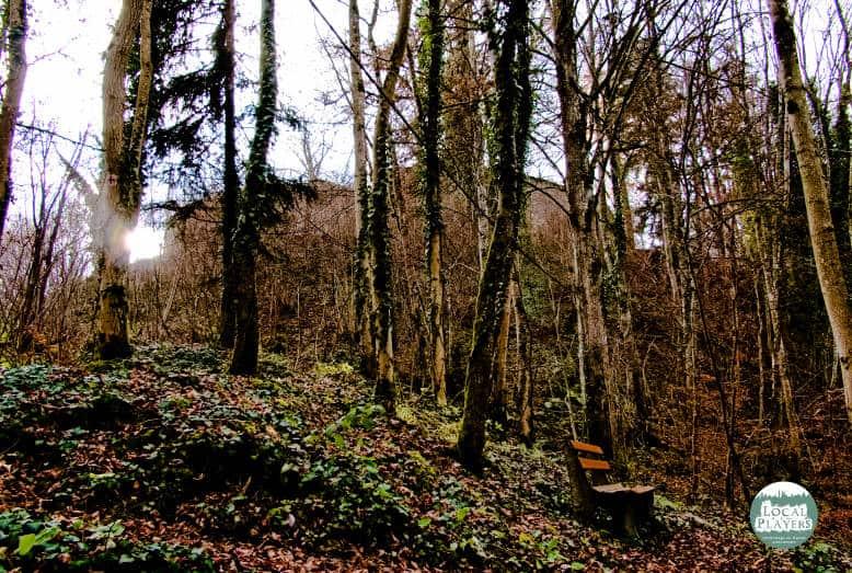 Ruine Albeck bei Sulz am Neckar - die ersten Konturen der Ruine zeigen sich