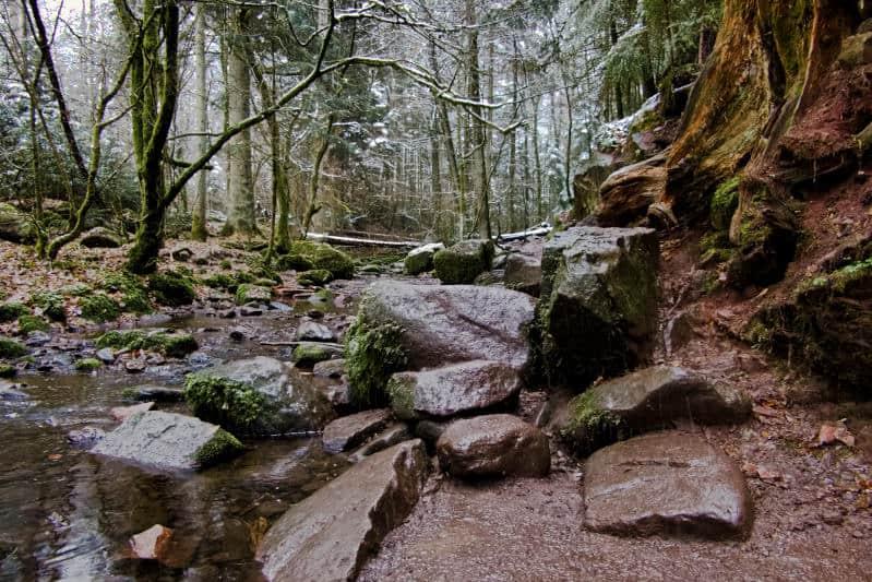 Monbachtal und Monbachschlucht - Wenn dir Steine in den Weg gelegt werden
