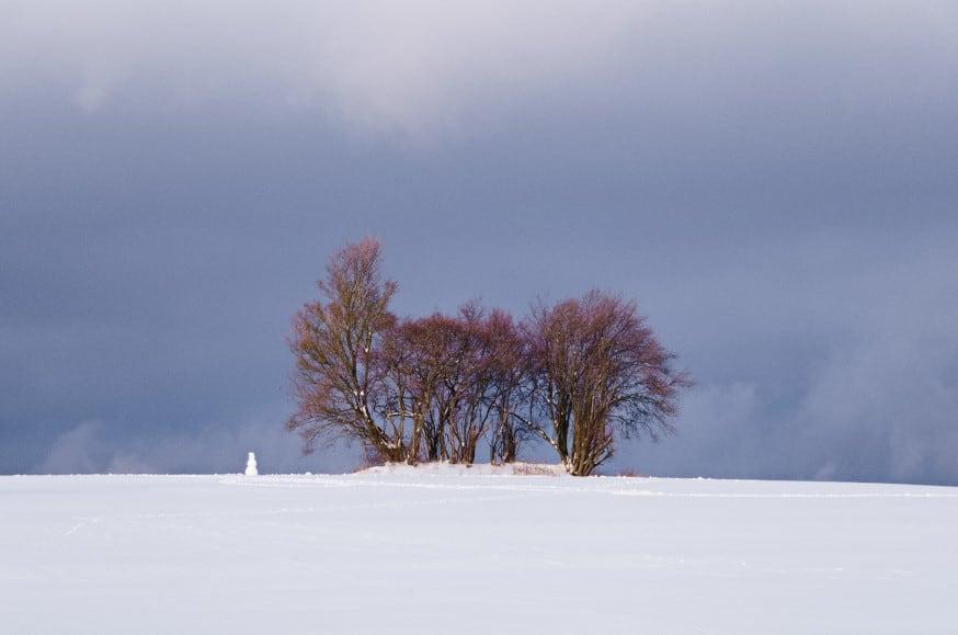 Schopflocher Moor - ein Schneemann grüßt aus der Ferne